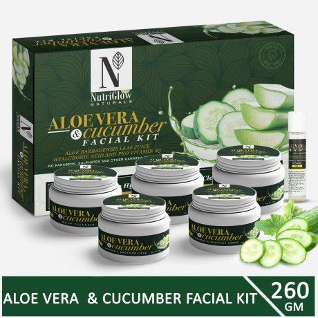 Aloe-vera-cucumber-facial-kit
