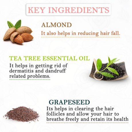 key-ingredients